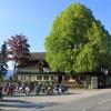 Restaurant Wirtshaus Zum Gustl in St Stefan im Gailtal