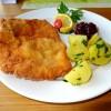 Restaurant Seegasthaus Ötscher-Basis in Wienerbruck