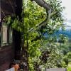 Restaurant Zur Hube in Pistorf (Steiermark / Deutschlandsberg)