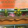 Restaurant Jausenstation Giessenbachmuhle in St. Nikola an der Donau (Oberösterreich / Perg)